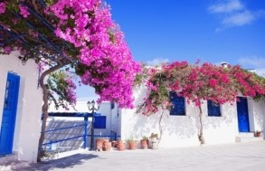 Paros Guided Tour